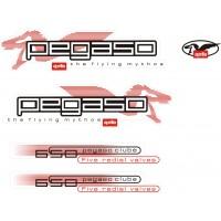 Стикери за Aprilia Pegaso 650 2001 модел 26843