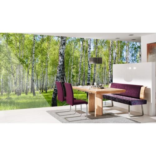 Фототапет брезова гората цифров печат максимален размер 260х700см модел 28052