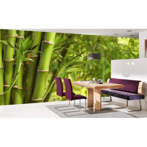 Фототапет бамбук бамбукова гора цифров печат максимален размер 260х400см модел 28100