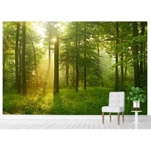 Фототапет гора проблясък между листата цифров печат максимален размер 260х400см модел 28111