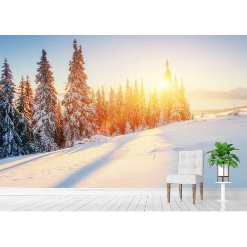 Фототапет ЗИМА слънце цифров печат максимален размер 200х300см модел 28179