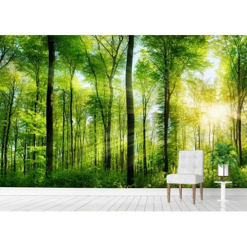 Фототапет ГОРА слънце цифров печат максимален размер 260х400см модел 28180
