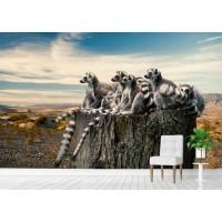 Фототапет животни от АФРИКА цифров печат флис основа максимален размер 200х300см модел 28360