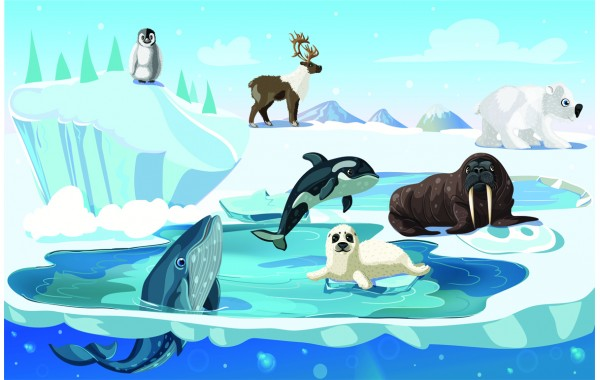 Фототапет модел 28601 Арктика