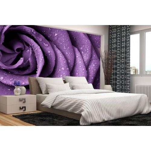 Фототапет лилава роза цифров печат максимален размер 260х400см модел 28091