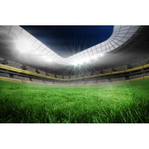 Фототапет модел 28121 футболно игрище
