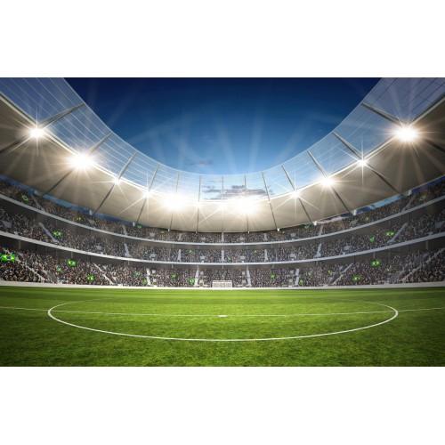 Фототапет модел 28145 футболно игрище