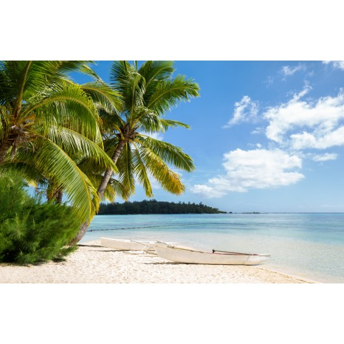 Фототапет модел 28194 плаж палми