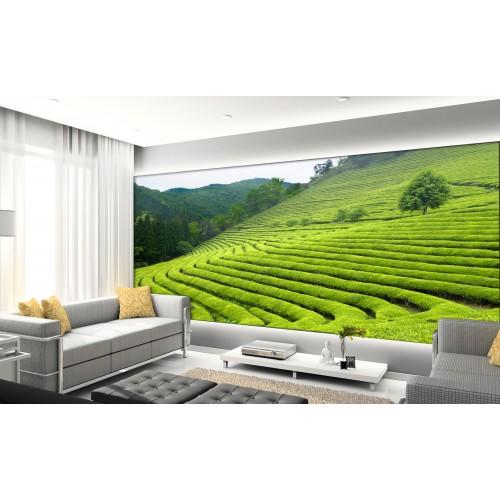 Фототапет модел 28218 оризови полета