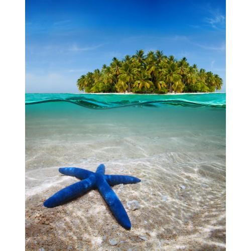 Фототапет модел 28266 плаж палми