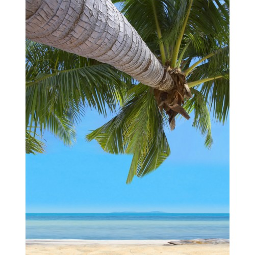 Фототапет модел 28268 плаж палми