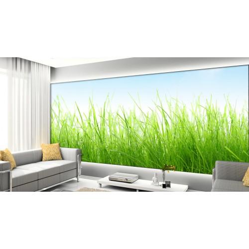 Фототапет модел 28392 трева поле класове