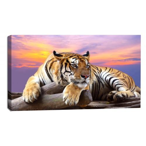 Картина от канава Модел 14041 тигър