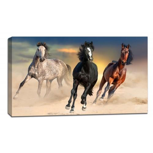 Картина от канава Модел 14045 коне