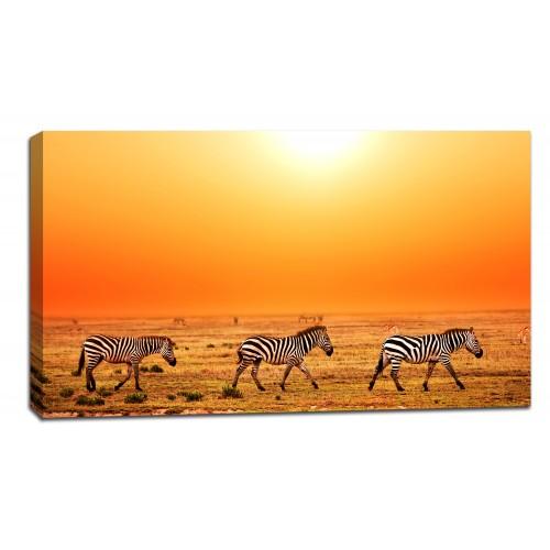 Картина от канава Модел 14052 зебри