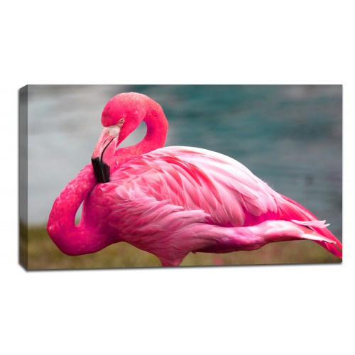 Картина от канава Модел 14055 фламинго
