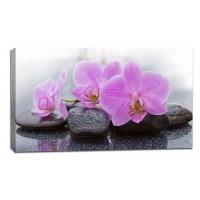 Картина от канава Модел 14064 орхидея