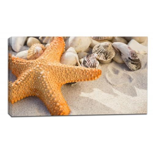 Картина от канава Модел 14078 море звезда плаж