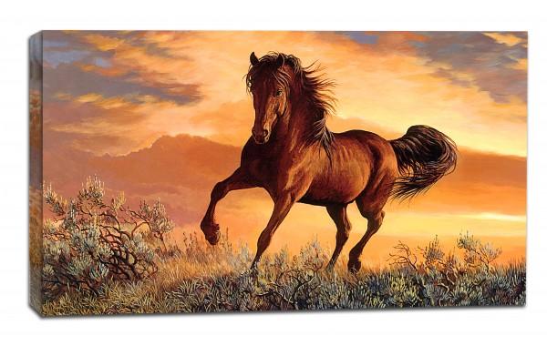 Картина от канава Модел 14079  кон