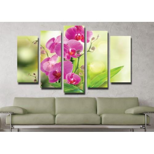 Декоративни панели и картини от канава Модел 13 033 орхидея пет части