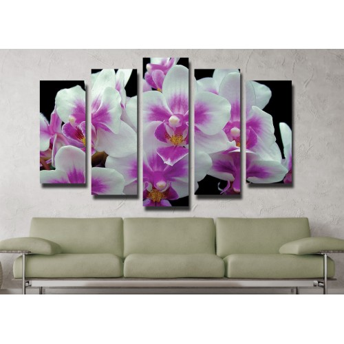 Декоративни панели и картини от канава Модел 13 035 орхидея пет части