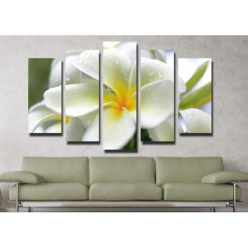 Декоративни панели и картини от канава Модел 13 043 цвете пет части
