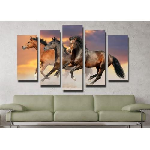 Декоративни панели и картини от канава Модел 13 045 коне пет части