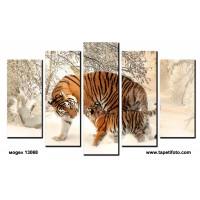 Декоративни панели и картини от канава Модел 13 068 тигри пет части