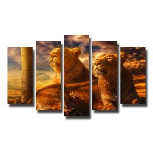 Декоративни панели и картини от канава Модел 13 078 лъвове пет части