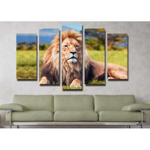 Декоративни панели и картини от канава Модел 13 114 лъв пет части