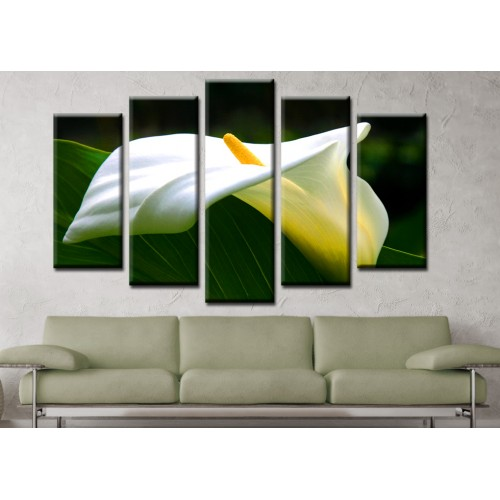 Декоративни панели и картини от канава Модел 13 123 цвете пет части