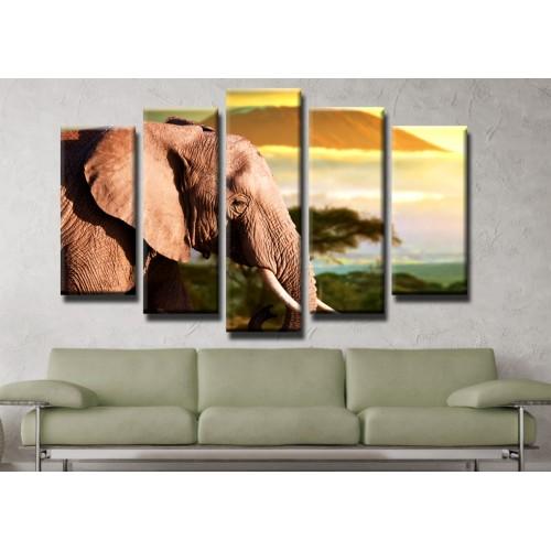 Декоративни панели и картини от канава Модел 13 198 слон пет части