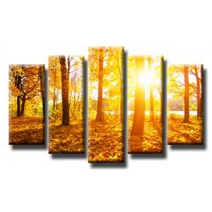 Декоративни панели и картини от канава Модел 13 430 гора слънце пет части