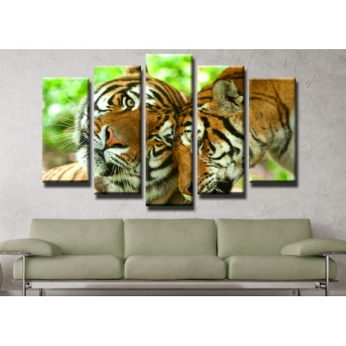 Декоративни панели и картини от канава Модел 13 435 тигри  пет части