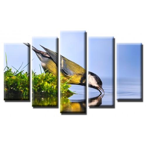 Декоративни панели и картини от канава Модел 13 454 птичка на водопой пет части
