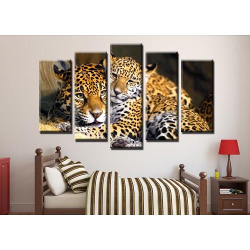 Декоративни панели и картини от канава Модел 13 456 леопард пет части