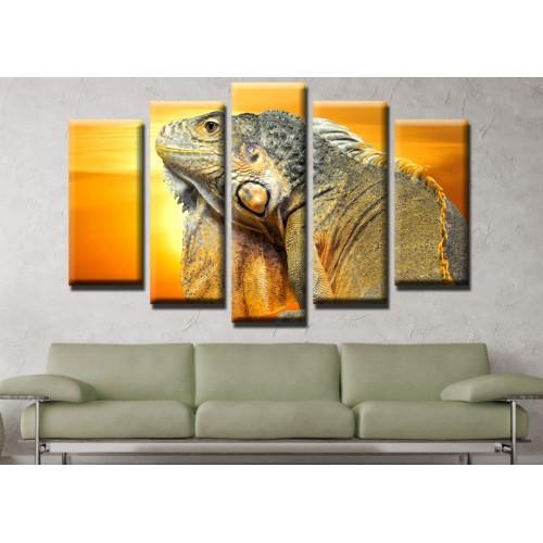 Декоративни панели и картини от канава Модел 13 462 игуана пет части