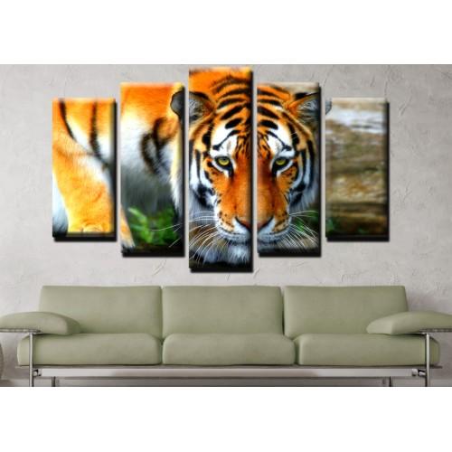 Декоративни панели и картини от канава Модел 13 520 тигър  пет части