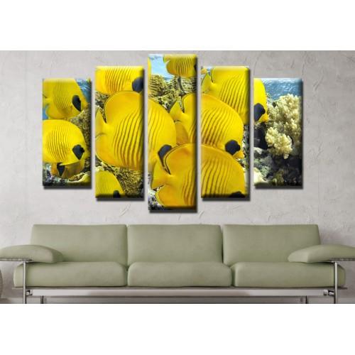 Декоративни панели и картини от канава Модел 13 543 рибки  пет части