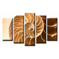 Декоративни панели и картини от канава Модел 13 546 охлюв  пет части