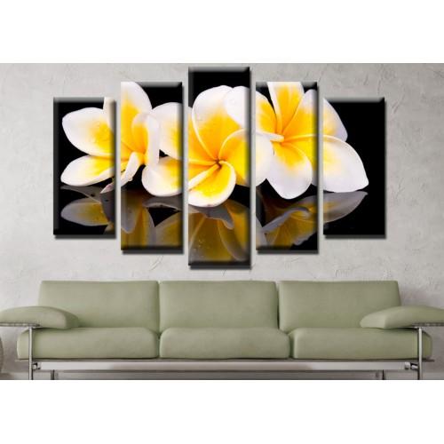 Декоративни панели и картини от канава Модел 13 551 цвете отражение пет части