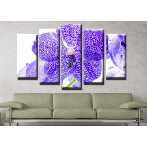 Декоративни панели и картини от канава Модел 13 624 орхидея пет части