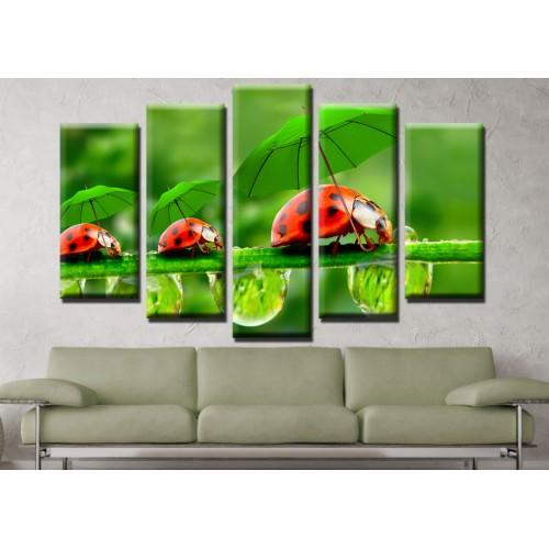 Декоративни панели и картини от канава Модел 13 657 калинки