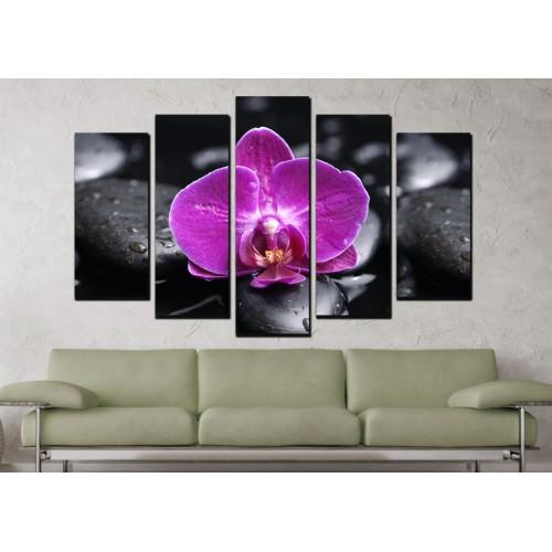 Декоративни панели и картини от канава Модел 13 685 орхидея