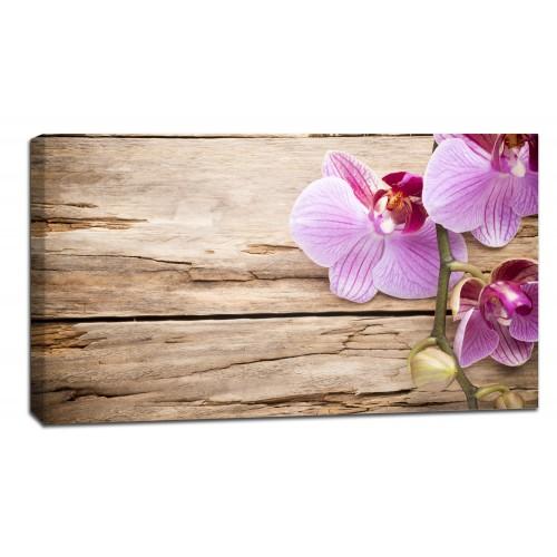 Картина от канава Модел 14018 орхидея