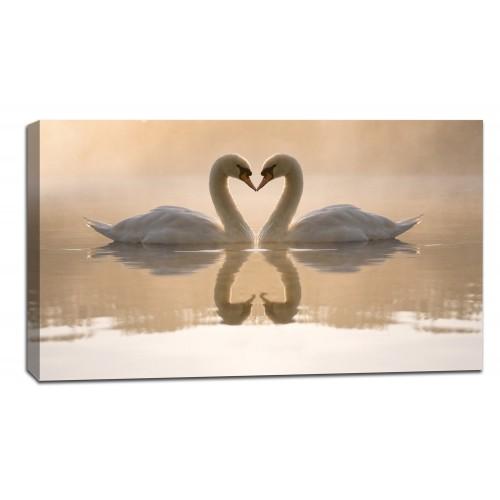 Картина от канава Модел 14025 лебеди