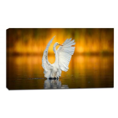 Картина от канава Модел 14027 птица