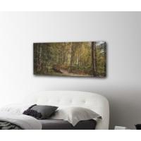 Картина от канава ГОРА размер 80х40см модел 12271