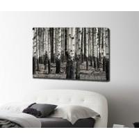 Картина от канава брезова ГОРА максимален размер 100х70см модел 12272