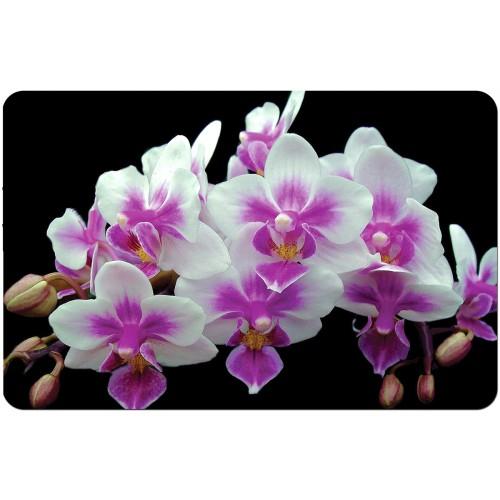 Подложки за хранене  многократна употреба орхидея модел 19765